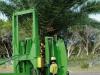 Palm Tree Removal Transplant